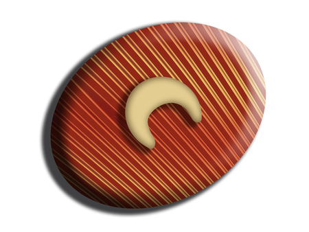Nut on striped chocolate Banco de Imagens
