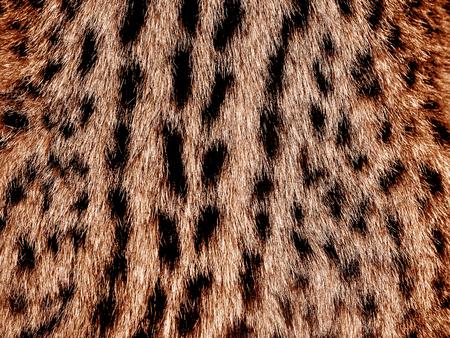 Black spotted feline skin background