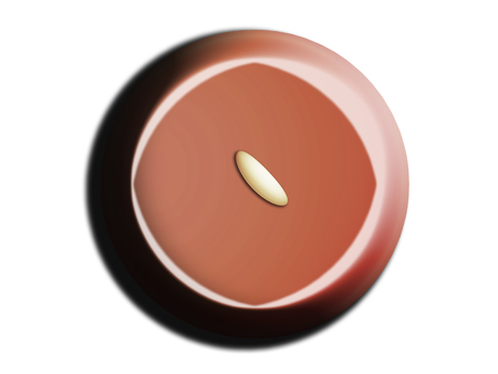 Chocolate bombom isolated on white