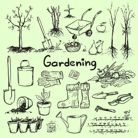 soil: Hand drawn garden tools.