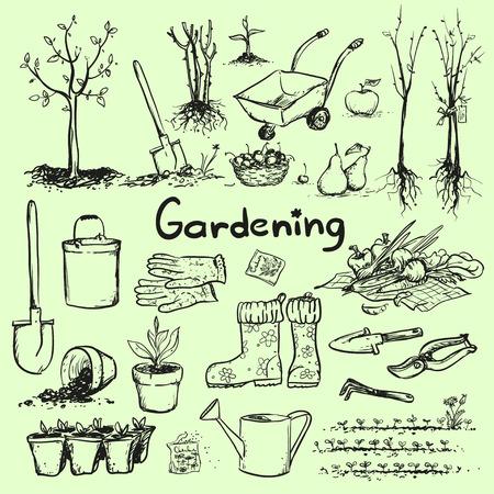 farm equipment: Hand drawn garden tools.