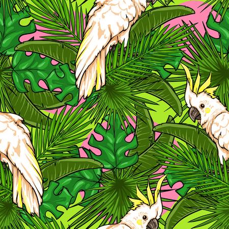 cotorra: Modelo inconsútil con las hojas y los loros de palma, Fondo tropical