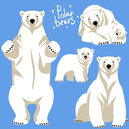 ourson: Collection Polar Bears. Clip art isolé sur bleu