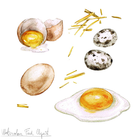 breakfast eggs: Watercolor Cooking Clipart - Eggs