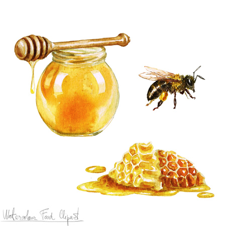 honey comb: Watercolor Cooking Clipart - Honey