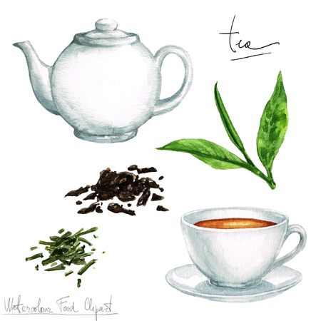 tea hot drink: Watercolor Cooking Clipart - Tea Stock Photo