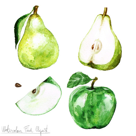 apple slice: Watercolor Food Clipart - Pear and Apple Stock Photo