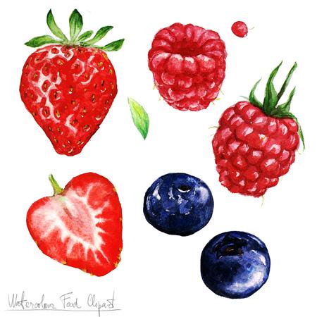 Waterverf het voedsel clipart - Berries Stockfoto