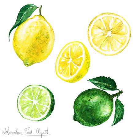 Akwarela Food Clipart - Lemon and Lime Zdjęcie Seryjne