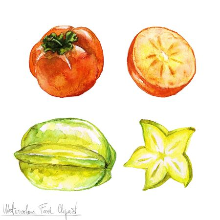 food clipart: Watercolor Food Clipart - Persimmon and Carambola
