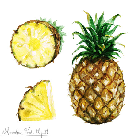 pineapple juice: Watercolor Food Clipart - Pineapple