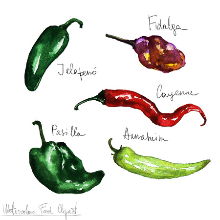 food clipart: Watercolor Food Clipart - Peppers
