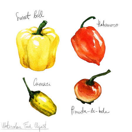 habanero: Watercolor Food Clipart - Peppers