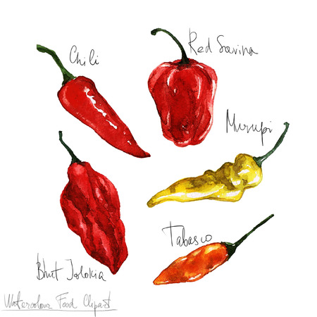 Watercolor Food Clipart - Peppers