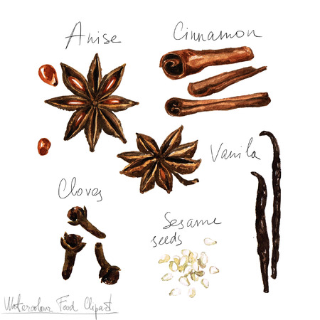 Waterverf het voedsel clipart - Spices