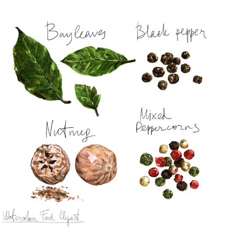 black pepper: Watercolor Food Clipart - Spices