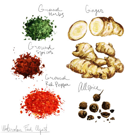 Waterverf het voedsel clipart - Spices