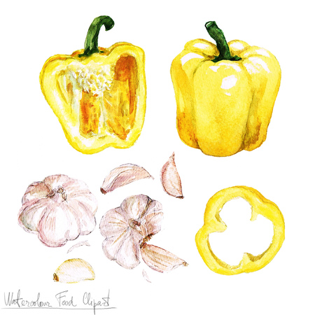 Watercolor Food Clipart - Bell Pepper and Garlic