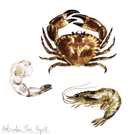 Watercolor Food Clipart - Crab and Shrimp 스톡 콘텐츠