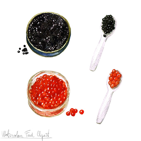 balck: Watercolor Food Clipart - Salmon roe and Sturgeon caviar Stock Photo