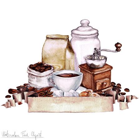 avellanas: Acuarela Alimentos Ilustraciones - Colección de café
