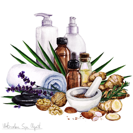 hair beauty: Watercolor SPA Clipart - Collection of SPA and Beauty products and elements, isolated
