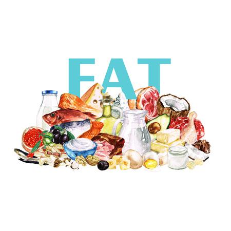coconut sugar: Watercolor Food Clipart - Healthy Balanced Nutrition - Fat group Stock Photo