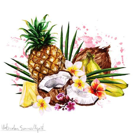 Acquerello Estate Clipart - frutta tropicale Archivio Fotografico - 59587269