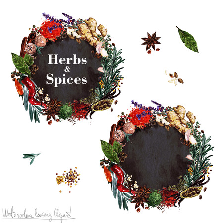 label design: Watercolor Cooking Clipart - Set of Herbs and Spices labels. Isolated