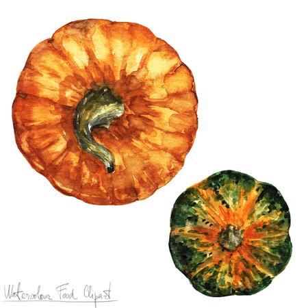 Watercolor Food Clipart - Pumpkin