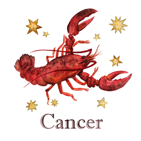 crawfish: Zodiac sign - Cancer. Watercolor Illustration. Isolated.