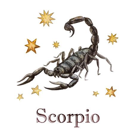 Zodiac sign - Scorpio. Watercolor Illustration.