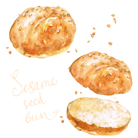 Sesame seed bun.  Watercolor Illustration.