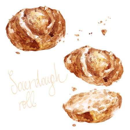 Sourdough roll. Watercolor Illustration.