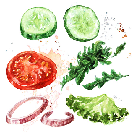 Salad ingredients. Watercolor Illustration. Фото со стока