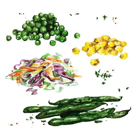 Vegetable sides. Watercolor Illustration.