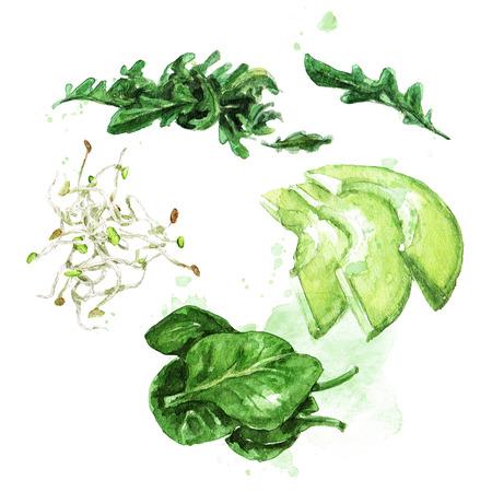 Salade ingrediënten. Aquarel illustratie. Stockfoto - 82871325
