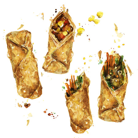Spring rolls. Watercolor Illustration. Stock Photo