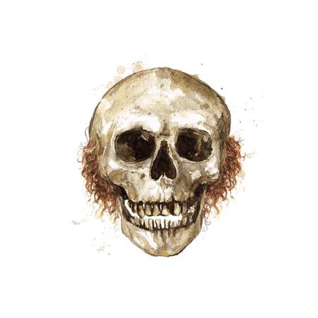 남성 해골. 수채화 그림.