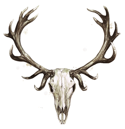 Deer Skull. Watercolor Illustration.