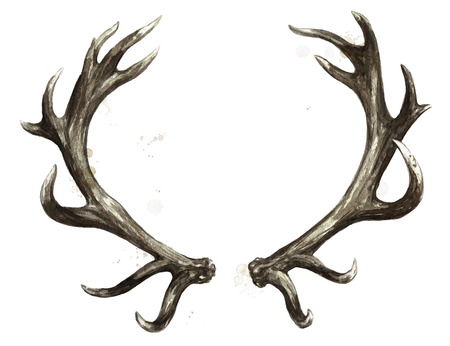 Antlers. Watercolor Illustration. Standard-Bild - 102529134