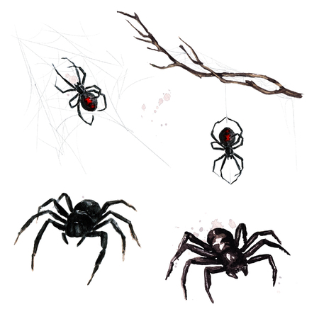 Spiders. Watercolor Illustration. Stock Photo