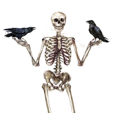 Human Skeleton. Watercolor Illustration. 스톡 콘텐츠
