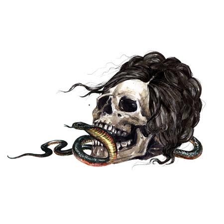 Human Skull. Watercolor Illustration.