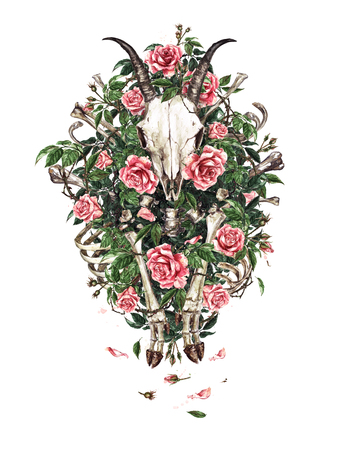 Animal Skull, Bones and Flowers. Watercolor Illustration. Stock Photo