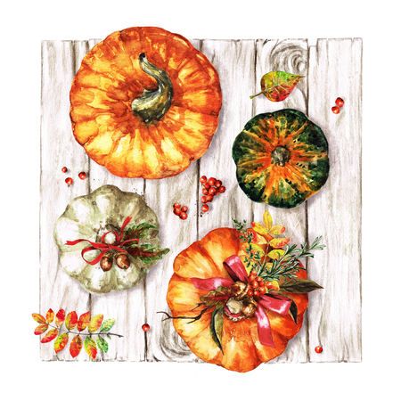 Autumn Pumpkins. Watercolor Illustrations.