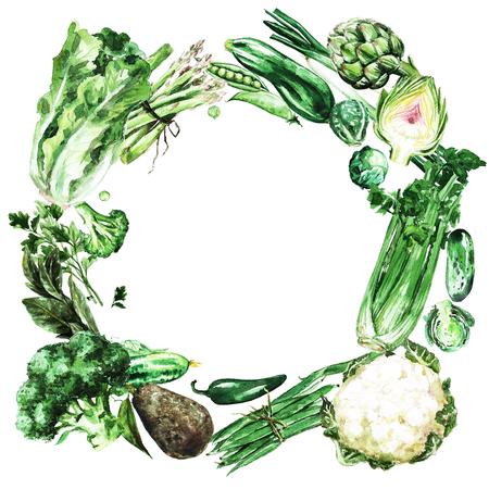 Fresh green Vegetables. Watercolor Illustration. Banque d'images