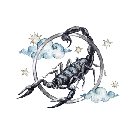 Zodiac sign - Scorpio. Watercolor Illustration