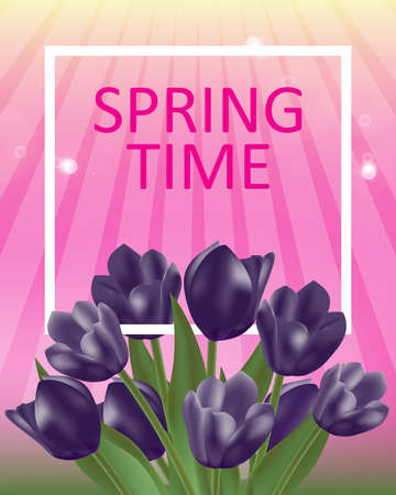 Background spring flowers with dark purple tulips and space for message. Vector Illustration. Vettoriali