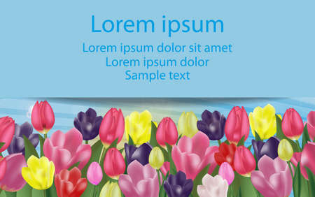 Background with colorful tulips with space for your text. Spring flowers. Vector Illustration.